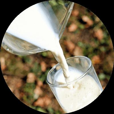 生乳100%使用、成分無調整の「ひるがの3.6牛乳」を使用