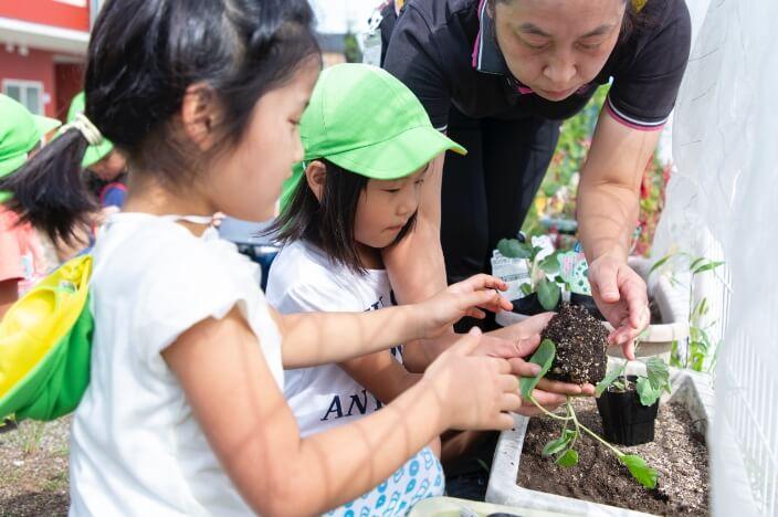 子どもの心も育てる野菜づくりを通じて学ぶ食の大切さ